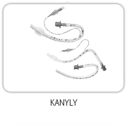 Kanyly